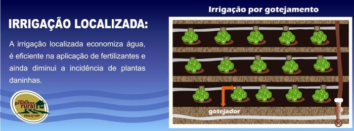 Banner_Irrigação localizada