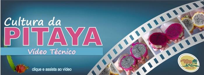 Banner - Vídeo Cultura da Pitaya
