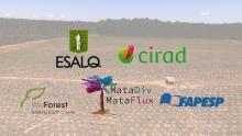 TV USP Informa - Apresentação do experimento MataDIV (USP/ESALQ - Cirad)