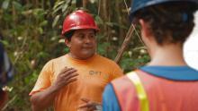 Especiais TV USP - Exploração de Impacto Reduzido na Floresta Amazônica